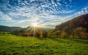 Обои облака, трава, небо, солнце, холмы, Olsberg, поле, зелень, Германия, деревья, дорога, лучи
