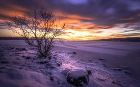 Картинка закат, Бускеруд, озеро Тюрифьорд, Lake Tyrifjorden, Buskerud, Норвегия, озеро, дерево, Norway, зима, снег, Lake Tyri