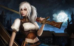 Обои белые волосы, небо, ружье, девушка, ночь, луна, город, взгляд