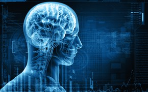 Картинка skull, brain, radiography