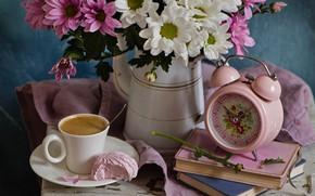 Картинка цветы, часы, кофе, чашка, хризантемы