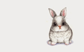 Картинка животные, рисунок, кролик, малыш, арт, карандаш, зайчик, детская