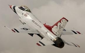 Картинка истребитель, F-16, Fighting Falcon, Thunderbird