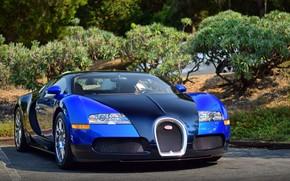 Картинка veyron, bugatti, blue