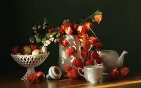 Картинка осень, яблоки, чайник, чашка, ваза, кувшин, физалис, сентябрь, флора, снежноягодник