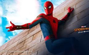 Картинка Marvel Comics, Peter Parker, Movie, Tom Holland, Spider-Man: Homecoming, Человек-паук: Возвращение Домой