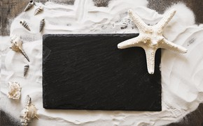 Картинка песок, звезда, ракушки, summer, wood, sand, marine, starfish, composition, seashells
