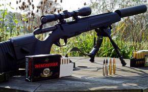 Картинка оружие, gun, винтовка, weapon, rifle, Scout, Скаут, Steyr, Steyr scout