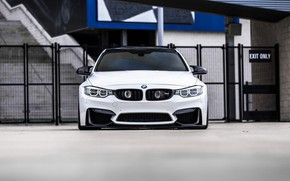 Картинка BMW, Front, White, Face, F82, Sight