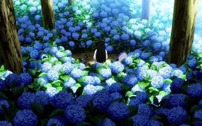 Обои деревья, спина, сад, голубая, гортензия, Sankarea, Санкарея, Sanka Rea, Санка Рэя, черный котенок