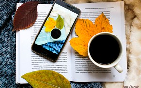 Картинка осень, листья, кофе, книга, телефон, плед, свитер, book, coffee, phone, чашка кофе, autmn, cup of …