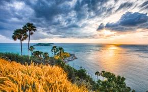 Картинка восход, пальмы, океан, рассвет, побережье, Таиланд, Phuket, Thailand, Индийский океан, Пхукет, Indian Ocean, Andaman Sea, …