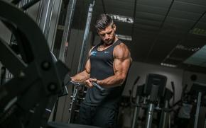 Картинка power, muscles, bodybuilder