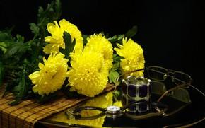 Картинка натюрморт, хризантемы, желтое на черном