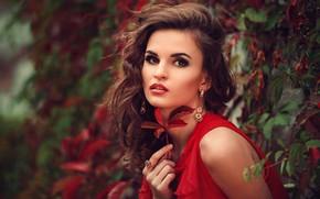 Картинка взгляд, листья, украшения, портрет, макияж, платье, прическа, шатенка, красотка, в красном, боке, Nastya, Julia Sariy