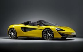 Картинка фон, McLaren, кабриолет, макларен, Spider, 570S