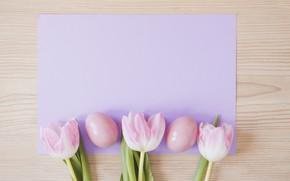 Картинка бумага, яйца, пасха, тюльпаны, Праздник