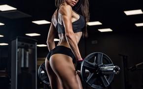 Обои грудь, попа, боди, fitness model, мыщцы, секси, спортзал, тренажеры, белье, девушка, photographer, брюнетка, спортсменка, прическа, ...