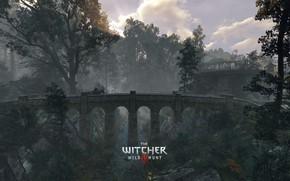 Картинка The Witcher, DLC, CD Projekt RED, The Witcher 3: Wild Hunt, Geralt, The Witcher 3 …
