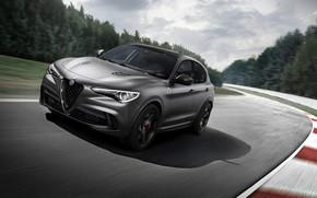 Картинка Alfa Romeo, гоночный трек, 2018, кроссовер, Quadrifoglio, Stelvio
