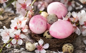 Картинка Цветы, Пасха, Яйца, Праздник