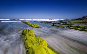 Картинка море, скалы, берег, мох