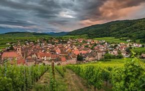 Обои природа, город, Riquewihr, панорама