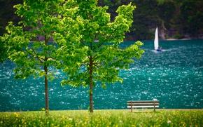 Картинка деревья, пейзаж, озеро, лодка, Австрия, парус, скамья, Тироль