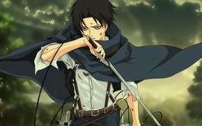 Картинка sword, blood, anime, ken, blade, asian, manga, japanese, oriental, asiatic, strong, sugoi, protector, Shingeki no …