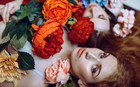 Картинка взгляд, девушка, цветы, лицо, настроение