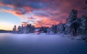Картинка зима, лес, небо, снег, дом, краски, домик