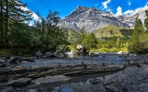 Картинка лес, горы, озеро, Швейцария, Switzerland, Bernese Alps, Бернские Альпы, Valais, Озеро Дерборанс, Derborence, Валлис, Lac …