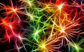 Обои абстракция, арт, пульс, разноцветный, Нейроны