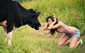 Картинка девушка, корова, луг, дурачество