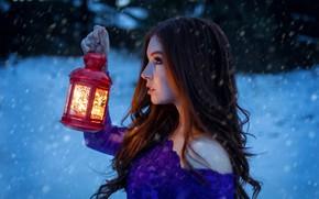 Картинка girl, Model, long hair, photo, eyes, winter, snow, mood, bokeh, lips, face, brunette, lamp, snowfall, …