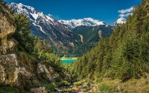 Картинка Горы, Лес, Пейзаж