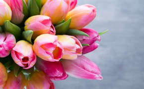 Картинка листья, крупный план, отражение, фон, тюльпаны, бутоны, боке