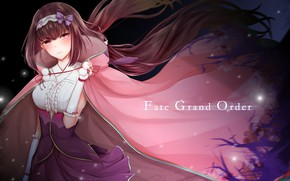 Картинка девушка, аниме, арт, Ассасин, fate/grand order