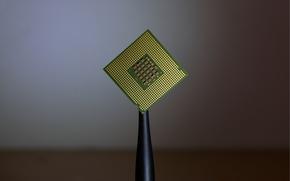 Картинка макро, Intel, CPU, процессор, сокет, S775, контакты