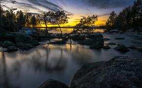 Картинка зима, лес, закат, речка, Швеция, Sweden, Sverige, Lapland