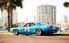 Картинка Dodge Challenger, muscle car, race car