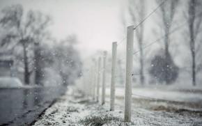 Обои дорога, снег, забор, last farewell