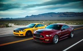 Обои дорога, Ford, дикий запад, Mustang GT, Shelby Terlingua, Shelby Super Snake