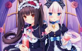 Картинка бокал, бутылка, голубые глаза, бант, ушки, длинные волосы, подруги, розочки, оборки, Sayori, Vanilla, Chocola, Neko …