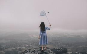 Обои девушка, туман, бабочка