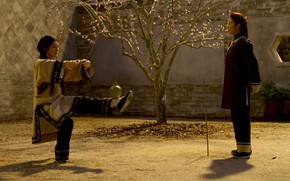 Картинка China, cinema, movie, asian, film, martial artist, chinese, oriental, asiatic, Michelle Yeoh, Crouching Tiger Hidden …