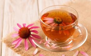Картинка цветы, чай, лепестки, напиток