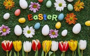 Обои Пасха, Травка, Цветы, Тюльпаны, Праздник, Яйца, Хризантемы