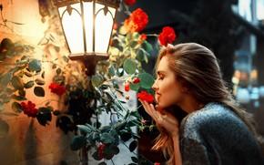 Картинка девушка, цветы, фонарь, Kaan ALTINDAL
