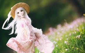 Картинка игрушка, шляпа, кукла, платье